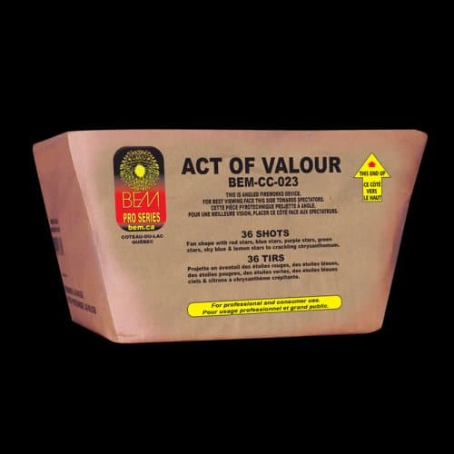 Act of valour firework
