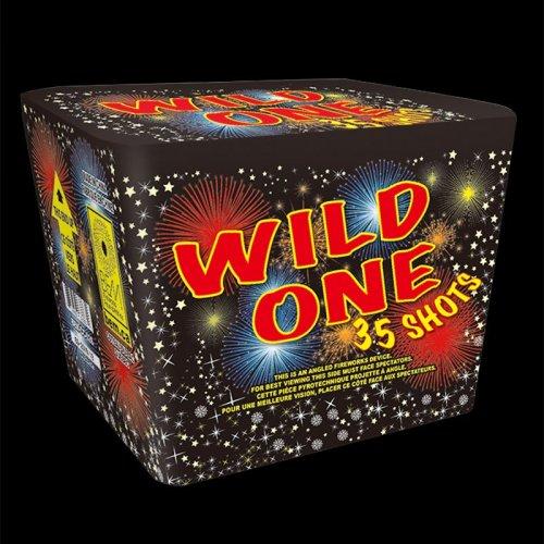 Wild One firework
